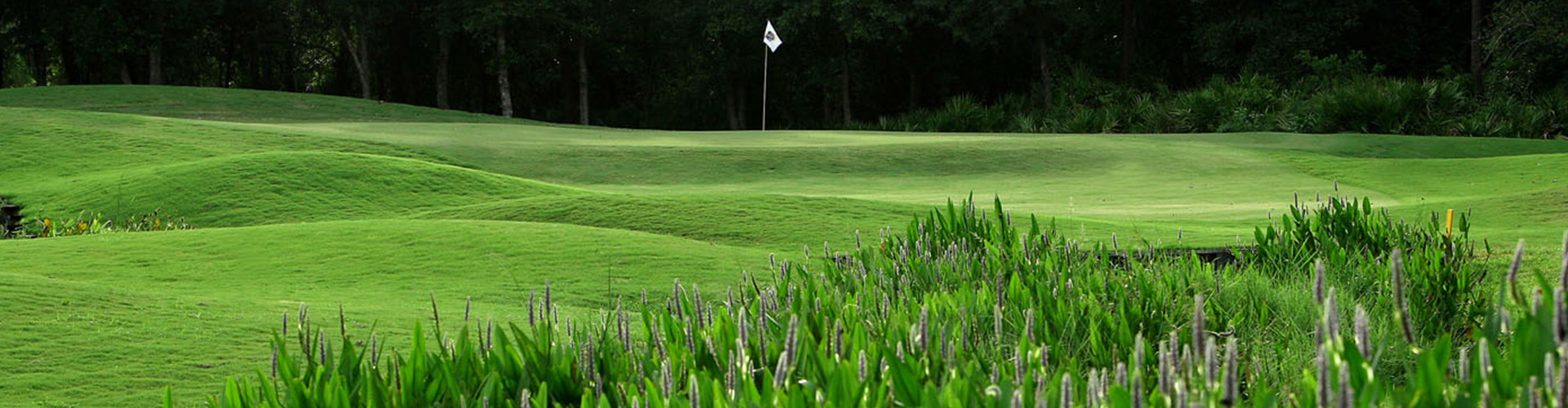 Providence Golf Club is located in the Orlando, Florida area